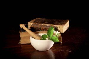 Comprendre la phytothérapie en 5 points essentiels