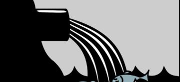 L'importance du système anti-flottation dans un décanteur lamellaire